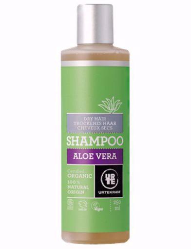 Urtekram šampon Aloe Vera - suché vlasy 250ml