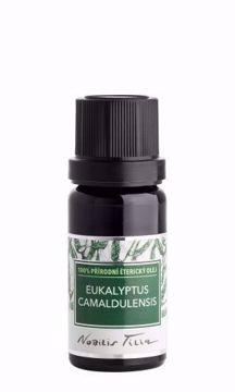 Nobilis Tilia Éterický olej Eukalyptus camaldulensis 10ml