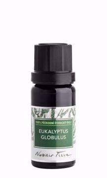Nobilis Tilia Éterický olej Eukalyptus globulus 10ml