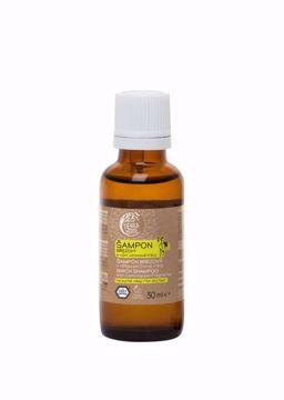 Obrázek Tierra Verde Březový šampon na suché vlasy s vůní citronové trávy 30 ml